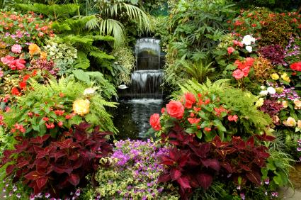 a beautiful garden with waterfall